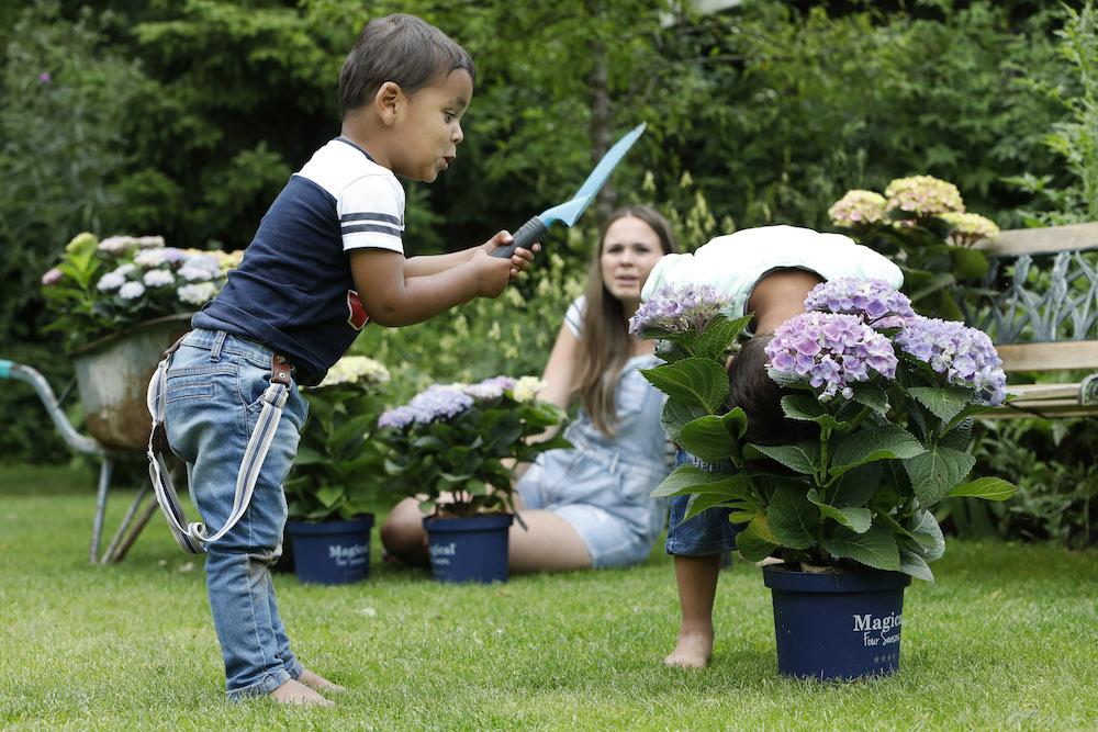 Styling ID Tips&Trends toveren met tuinkleuren leerzaam