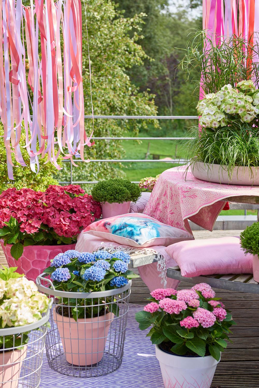Styling ID Tips & Trends Magische hortensia's kleuren het seizoen 5
