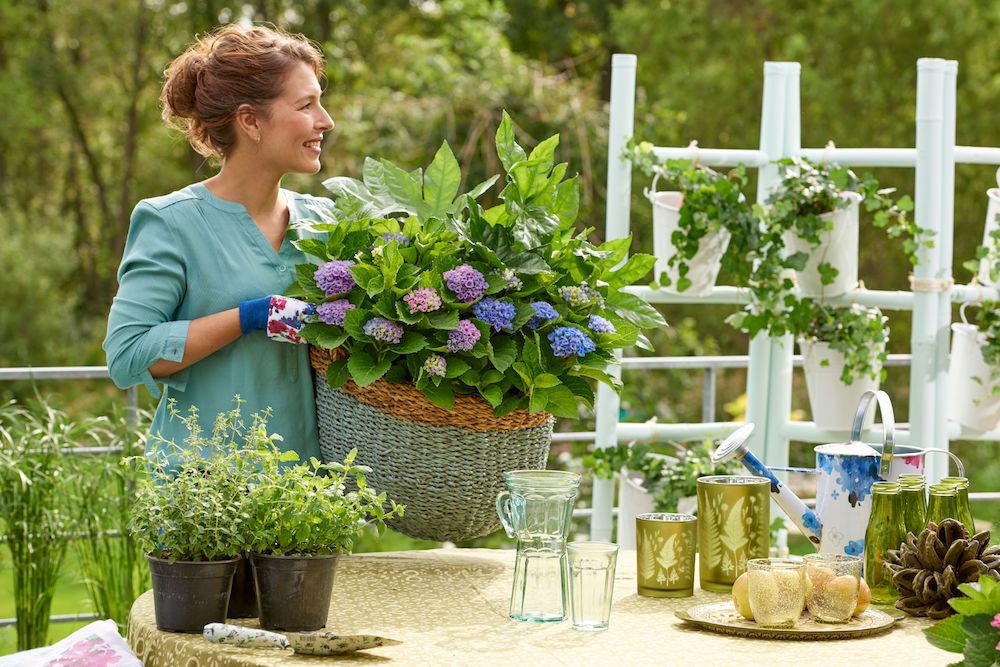 Styling ID Tips & Trends Magische hortensia's kleuren het seizoen 6