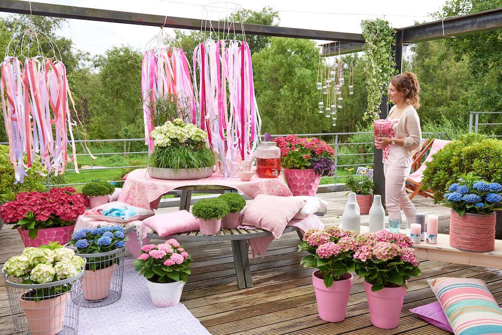 Styling ID blog 5 praktische tips voor nog meer tuinplezier magical hortensia