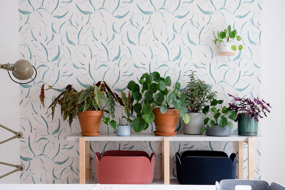 Haal tropical vibes in huis