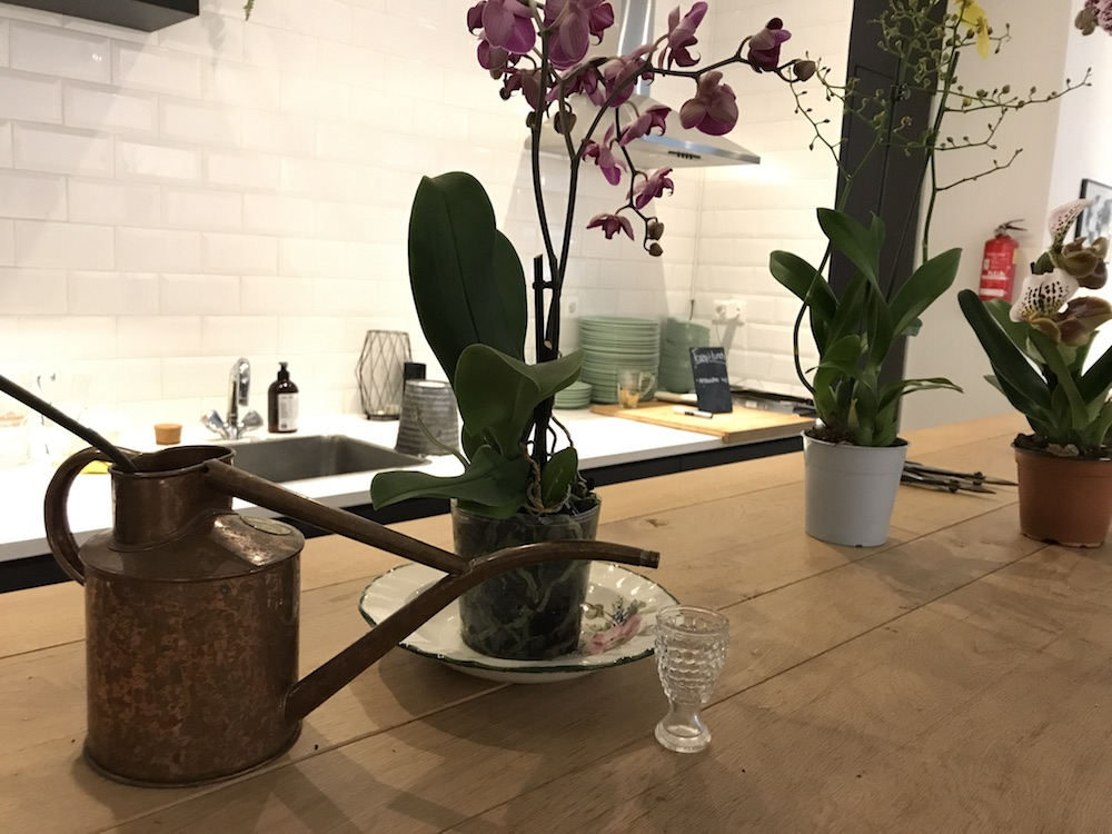 Styling ID Blog Orchideeen zijn hip en maken happy 1
