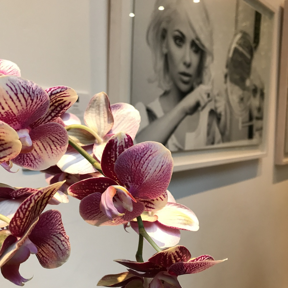 Styling ID Blog Orchideeen zijn hip en maken happy 5