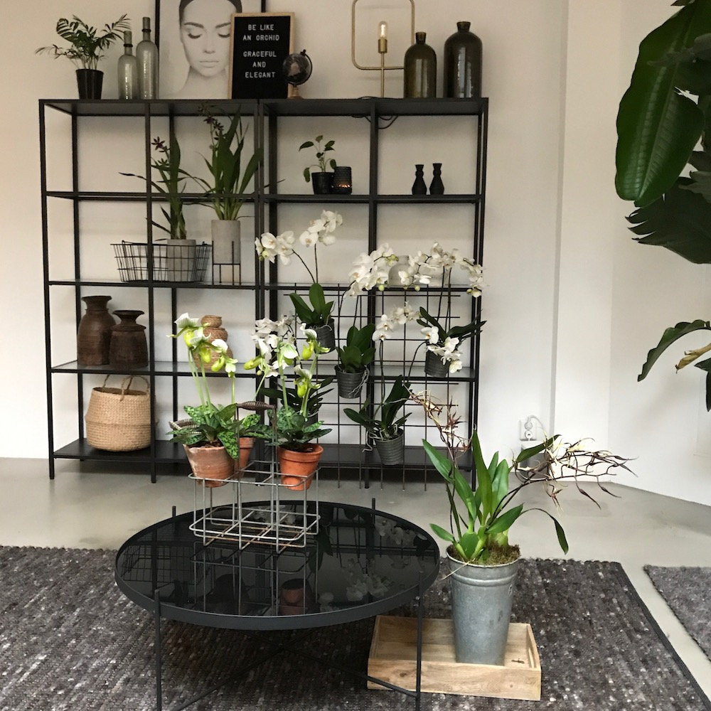 Styling ID Blog Orchideeen zijn hip en maken happy 14
