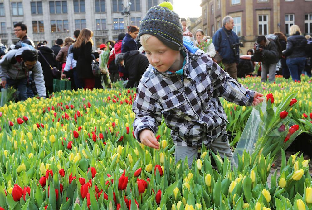 Styling ID Beurzen en Evenementen Gratis tulpen plukken in Amsterdam 3