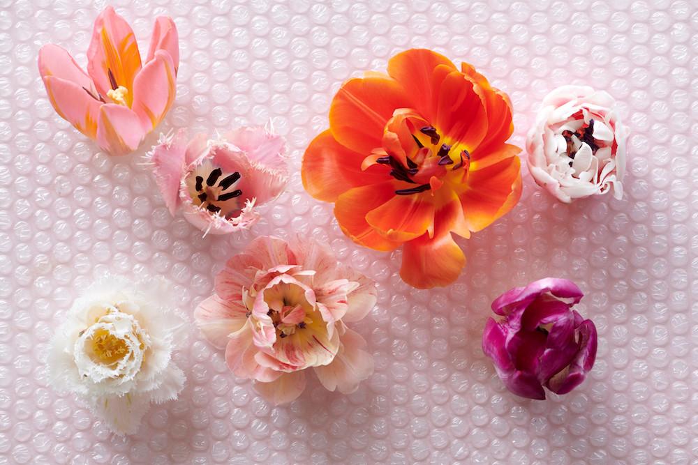 Styling ID Tips & Trends Vier het nieuwe jaar met deze kleurrijke tulpen