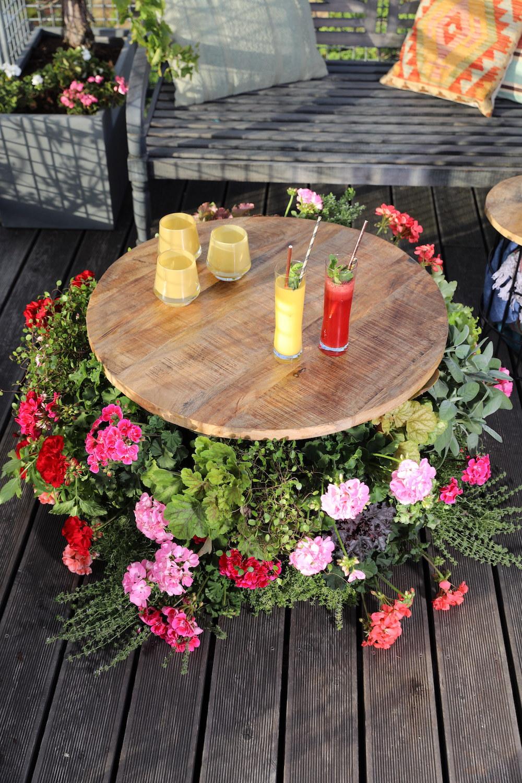 Styling ID Tips en Trends Kweek een bloemenparadij met Geraniums 9