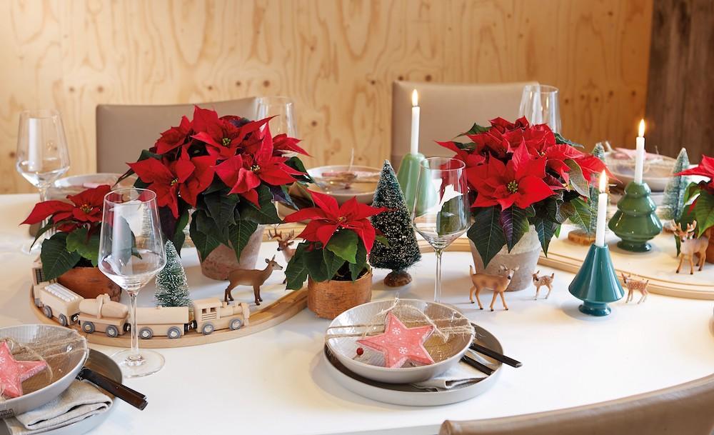 Styling-ID-Kerststerren-kleuren-het-najaar 7