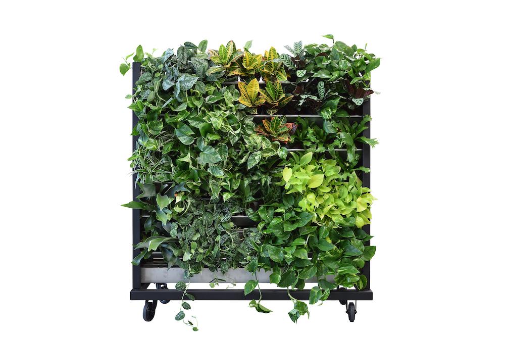 een-groene-leefomgeving-maakt-gelukkig